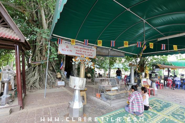 曼谷近郊旅‧樹中廟 求子廟‧泰拳公園 (2).JPG