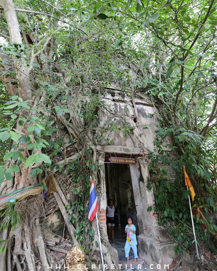 曼谷近郊旅‧樹中廟 求子廟‧泰拳公園 (3).JPG