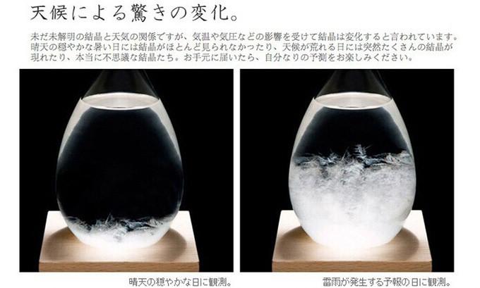 天氣預報瓶Storm Glass (21).jpg