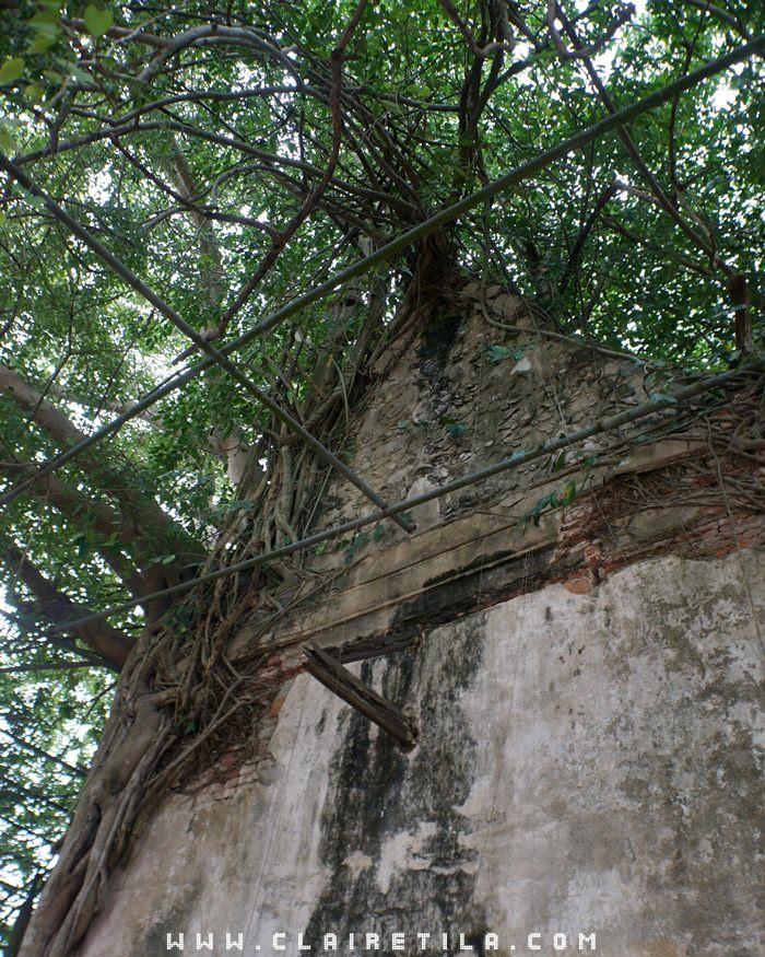 曼谷近郊旅‧樹中廟 求子廟‧泰拳公園 (7).JPG